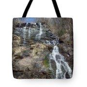 Amicolola Falls Tote Bag