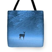 Amidst The Swirling Snow Tote Bag
