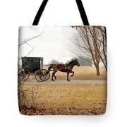 Amish Dream 1 Tote Bag
