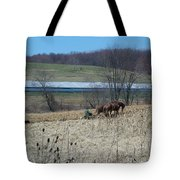 Amish Farming Tote Bag