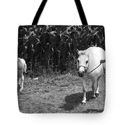Amish Girl With Her Colt Tote Bag