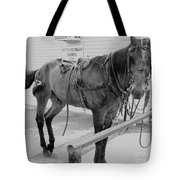 Amish Horse Tote Bag