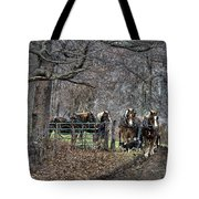 Amish Horses In Harness Tote Bag