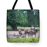 Amish Lady Disking Tote Bag