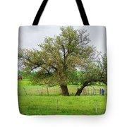 Amish Man And Tree Tote Bag