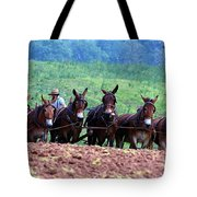 Amish Plowing The Fields With Mules Tote Bag