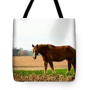 Amish Work Horse Tote Bag