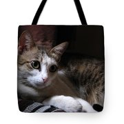 Ammani The Cat Tote Bag