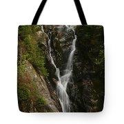 Ammonoosuc Ravine Falls Tote Bag