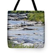 Ammonoosuc Sculptures Tote Bag