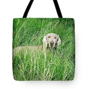 Among The Grasses Tote Bag