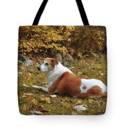 Among The Leaves Tote Bag