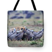 Among The Vultures 2 Tote Bag