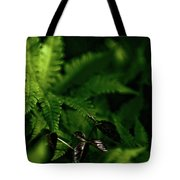Amongst The Fern Tote Bag