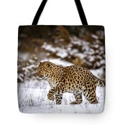 Amur Leopard Walks In A Snowy Forest Tote Bag