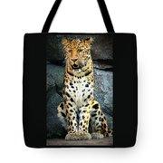 Amur Lepard I Hear Something Tote Bag