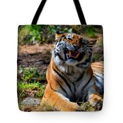 Amur Tiger 7 Tote Bag