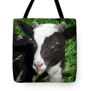 Amy's Lamb Tote Bag