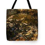 An Abstract Fall Reflection Tote Bag