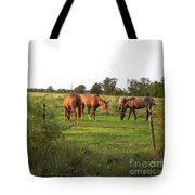 An Afternoon With Friends Tote Bag