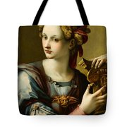 An Allegory Of Fortitude Tote Bag