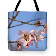 An Almond Tree Blooming Tote Bag