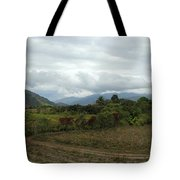 An Amazing View Tote Bag
