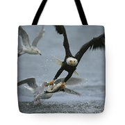 An American Bald Eagle Grabs A Fish Tote Bag