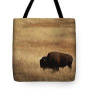 An American Bision In Golden Grassland Tote Bag