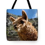An Andean Icon Tote Bag
