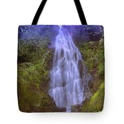 An Angel In The Falls  Tote Bag
