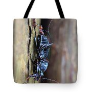 An Ant's Haul Tote Bag