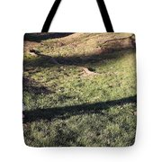 An Arlington Grave With Flowers And Shadows Tote Bag