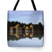 An Artist's Dream-2 Tote Bag