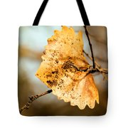 An Autumn Leaf Suspended Tote Bag