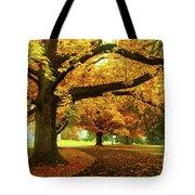 An Autumn Walk Through History Tote Bag