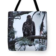 An Eagle Gazing Through Snowfall Tote Bag