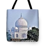 An Extraordinary View - The Taj Mahal Tote Bag