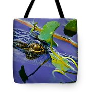 An Eye For The Camera Tote Bag