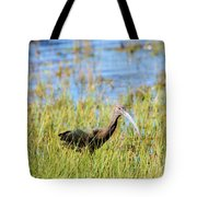 An Ibis In The Grass Tote Bag