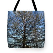 A Late Spring Tote Bag