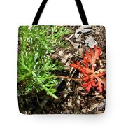 An Oddity Of Nature Tote Bag