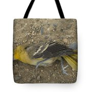 An Orchard Oriole On A Gravel Road Tote Bag