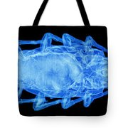 An X-ray Of A Scorpion Tote Bag