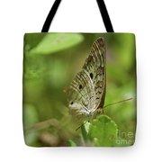 Anartia Butterfly In Wonderland  Tote Bag