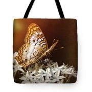Anartia Jatrophae - White Peacock Butterfly  Tote Bag