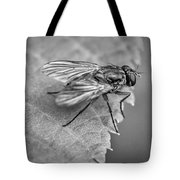Anatomy Of A Pest - Bw Tote Bag