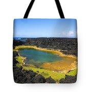 Anchialine Pond Tote Bag