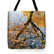 Anchorage In Autumn Tote Bag