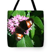 Anchored Down - Butterfly Tote Bag